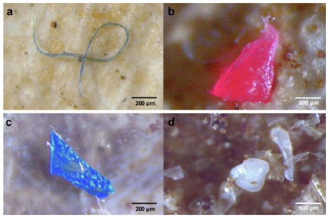 Four images of microplastic pollution, including from textiles.